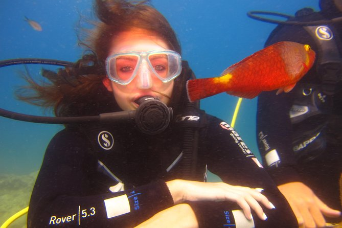 Alanya: Scuba diving experience for beginners photo 12