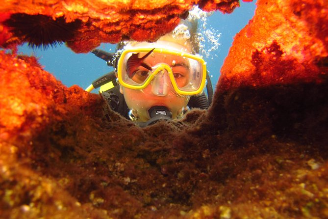 Alanya: Scuba diving experience for beginners photo 7