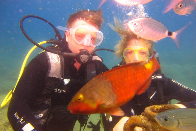 Alanya: Scuba diving experience for beginners photo 3