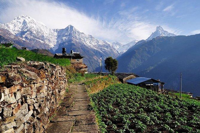 Day Hike in Pokhara