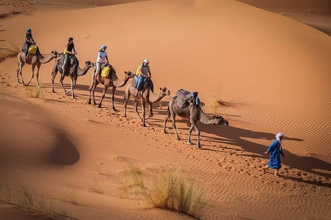 3 Days Marrakech To Fes Desert Tour Via Merzouga