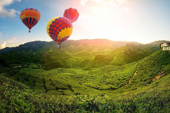 2D1N - Cameron Highlands, Batu Caves & Kuala Selangor Fireflies Tour