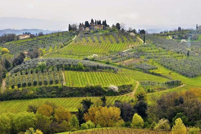 Private Shore Excursion from Livorno Port: Tuscany Highlights