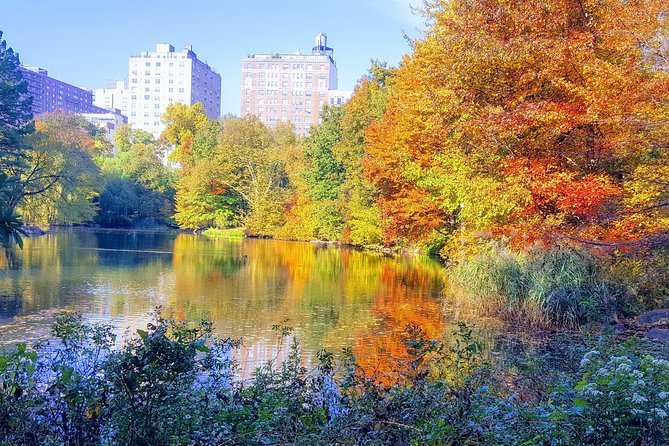 Central Park Bike Tour