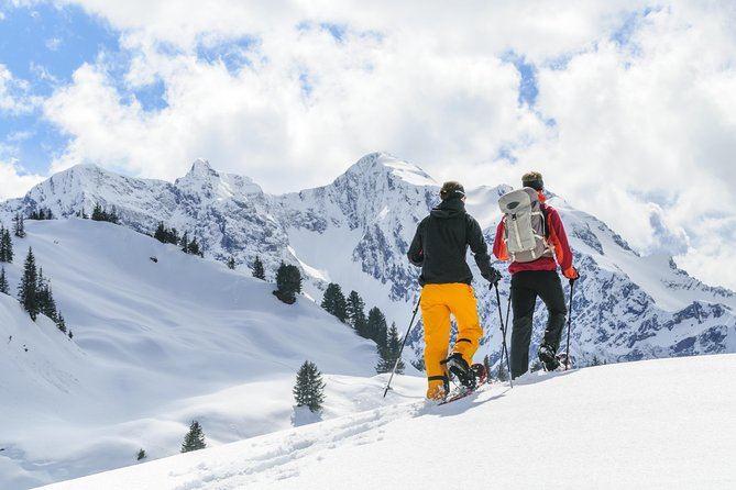 Snowshoeing ½ day around Baqueira