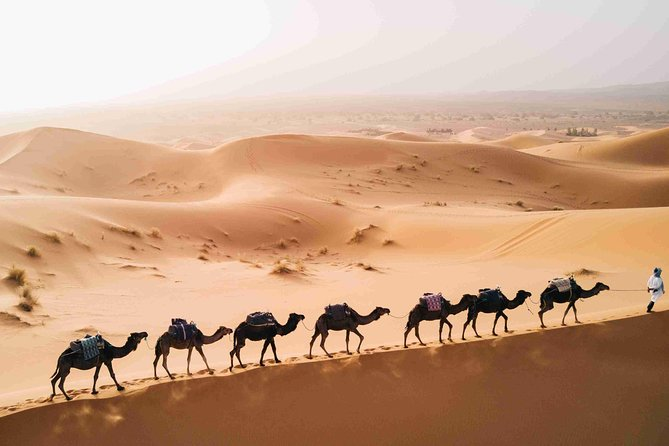 10 Days Grand Morocco Tour for Best Experience photo 14