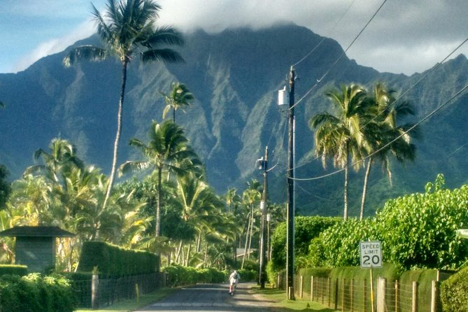 8 hour custom tour of the tropical North Shore/Hanalei/Lighthouse