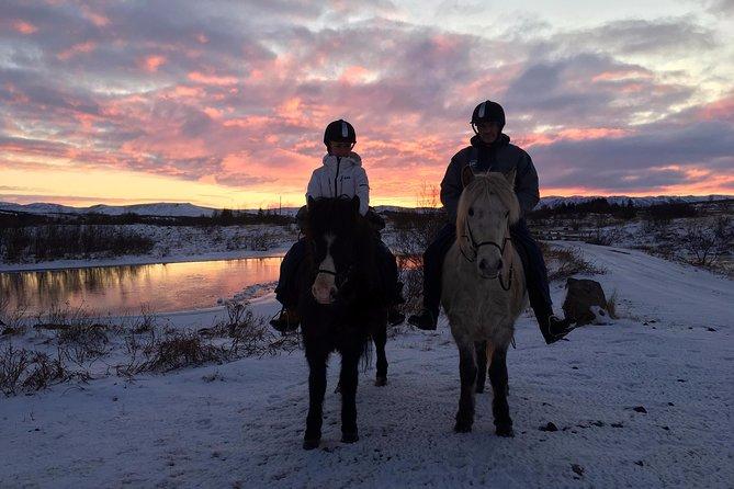 Private Horse Riding Tour of Lake Hafravatn from Reykjavik