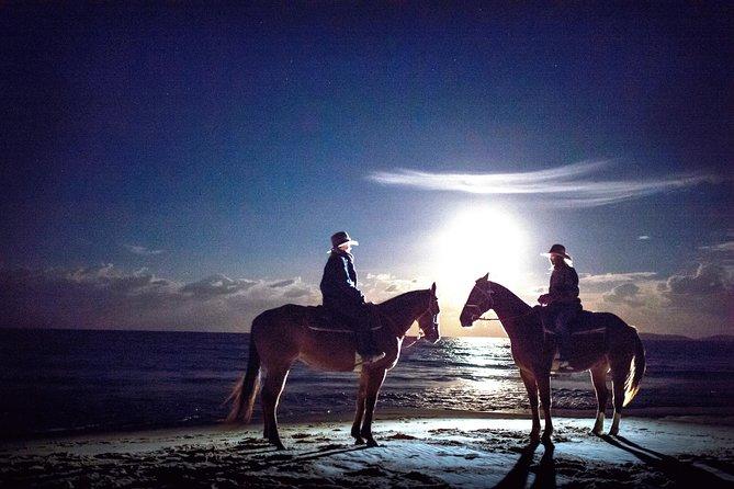 Full Moon Horse Ride at Rainbow Beach