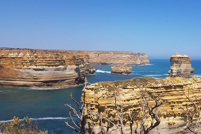 Luxury Private Great Ocean Road Tour up to 7 people - Entire Vehicle photo 7
