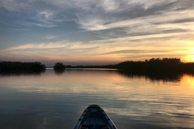 Wildlife Refuge Sunset Dolphin/Manatee Kayak or Paddleboarding Tour!