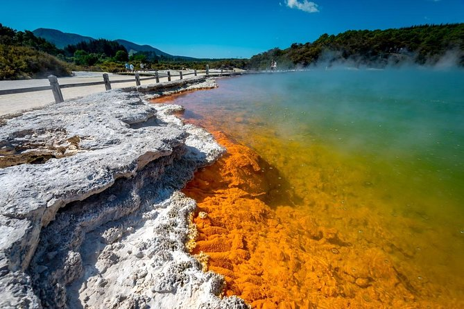 Wai-O-Tapu Thermal Wonderland + Lake Taupo Day Tour (From Auckland Return)