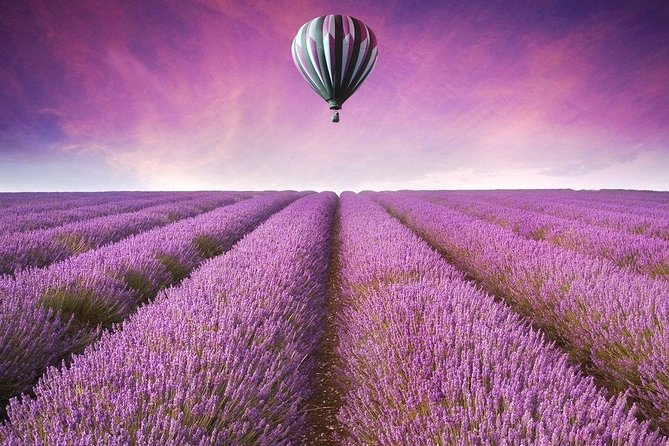 1 Day Romantic Tour in Oriental Provence Lavender Manor and Mutianyu Great Wall