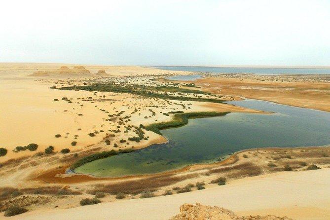 Fayoum Oasis & Wadi Al Rian & Wadi Hitan