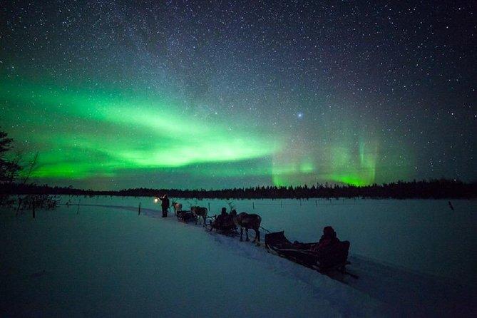 Chasing Auroras by Reindeer Safari