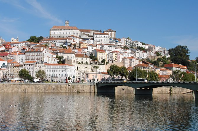 Coimbra and Bussaco Private Full Day Sightseeing Tour from Lisbon photo 2