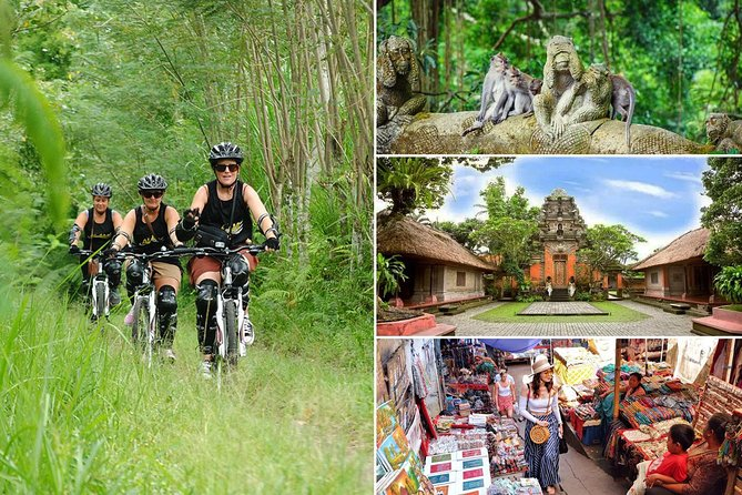 Bali Downhill Cycling and Ubud Village Tour