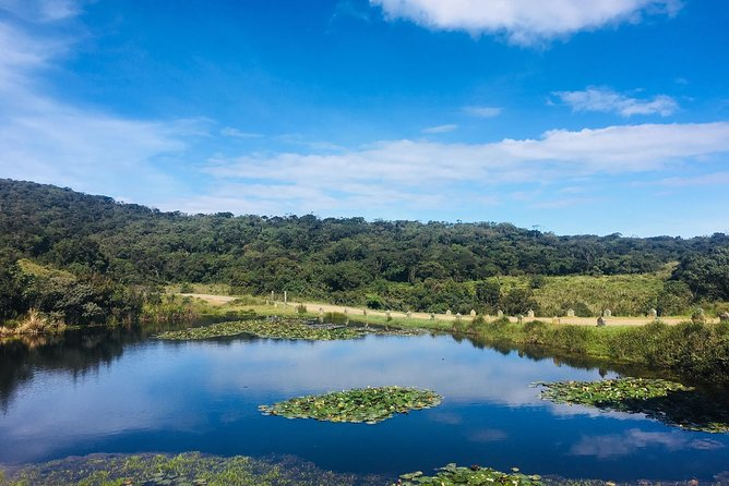 Horton Plains National Park & World's End Tour from Nuwaraeliya City