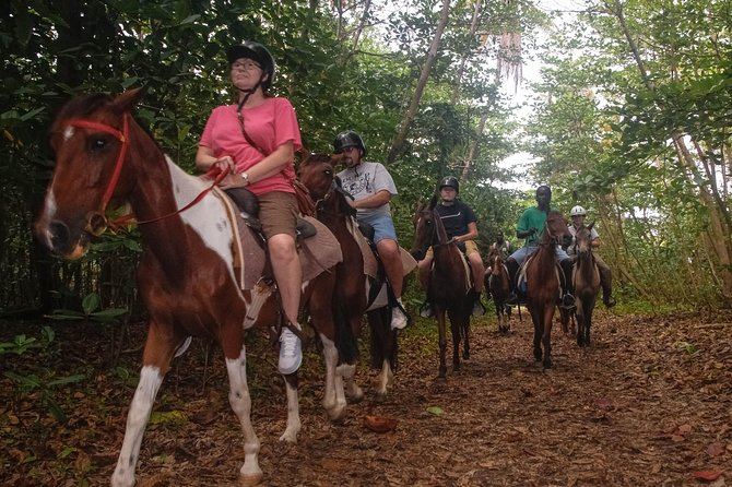East Coast Riding Stable: Horseback Riding Excursion St. Lucia photo 27