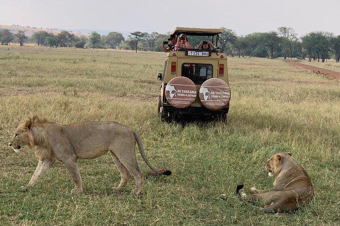 3 Days Tanzania Safari