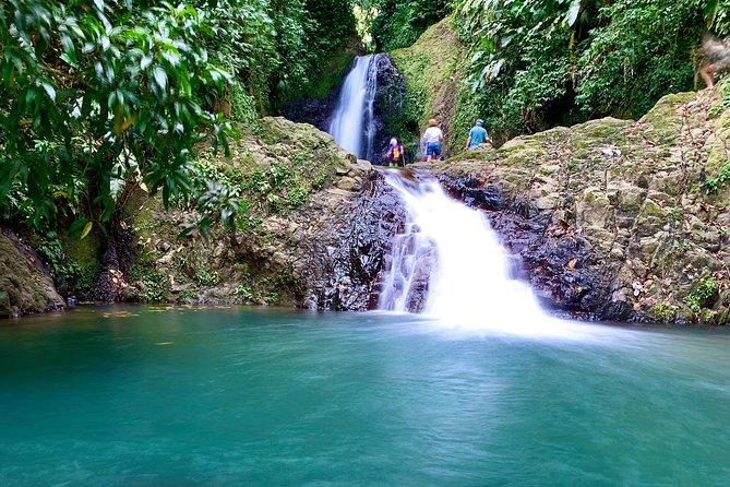 Seven Sisters Falls Hike / Annandale Falls / Grand Etang National Park & Lake