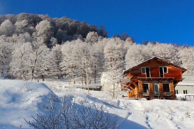 Winter tour to Georgia in Bakuriani for 5 days