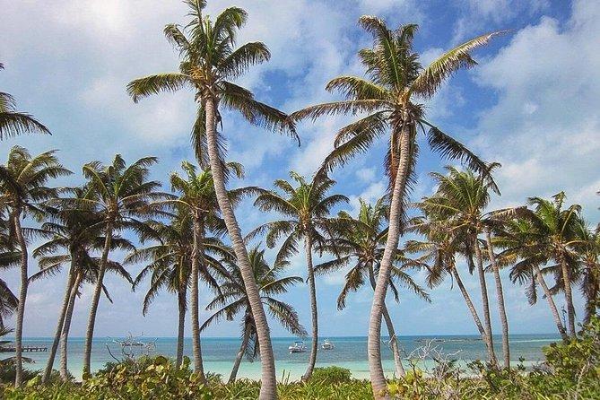 Tour Contoy Island