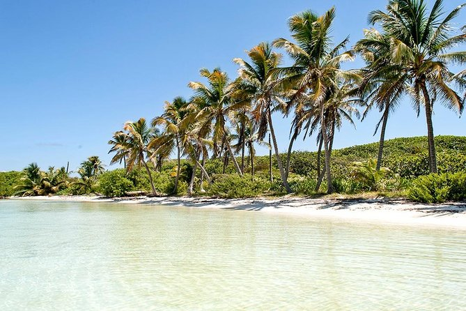 Excursion Isla Contoy & Isla Mujeres from Cancun