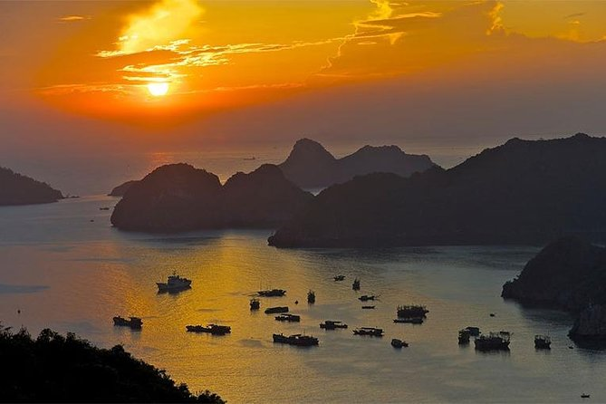 Cat Ba - Lan Ha Bay 1 Day Tour ( Departure From Ha Long City) photo 3