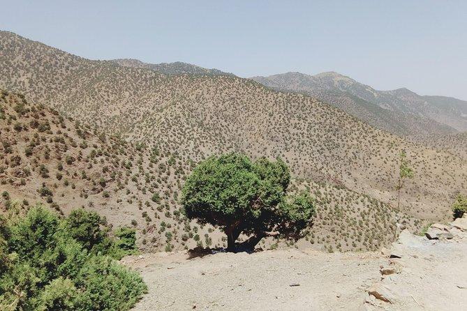 2 Days Toubkal from Marrakech