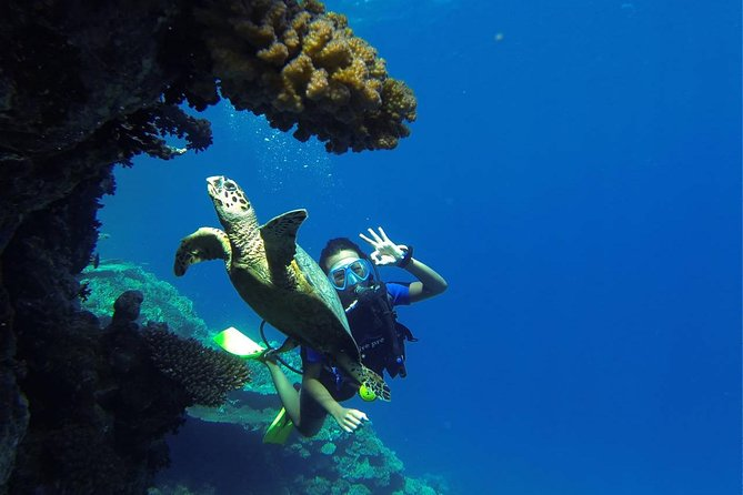 Scuba Diving Full Day Boat Trip – Hurghada