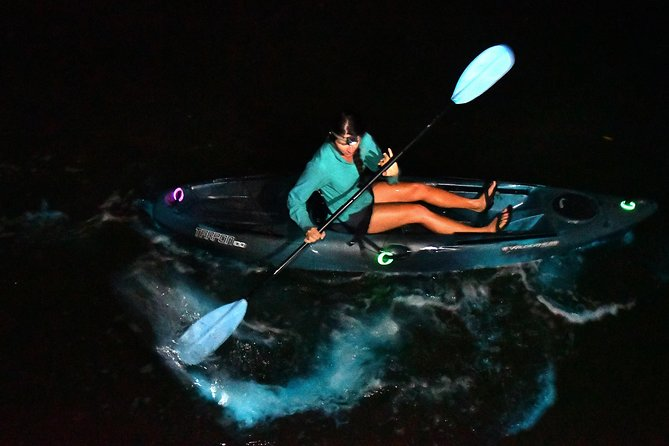 No Filter! Paddle amongst the gorgeous Bioluminescent GLOW! Imagine, shooting stars and northern lights under your kayak as you paddle!  Photographer Credit: Malcolm Denemark