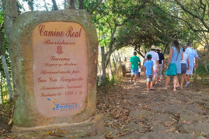 Eco Hike: The Royal Road To Guane