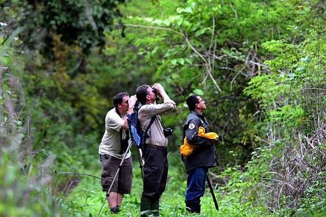 Half Day Birdwatching in Cerro Blanco from Guayaquil