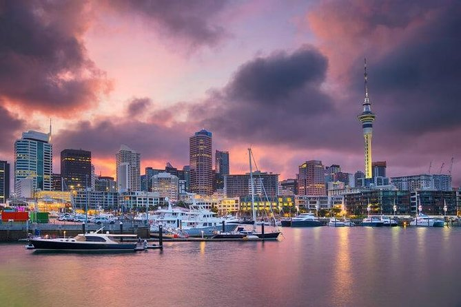 Auckland City Scenic Tour photo 6