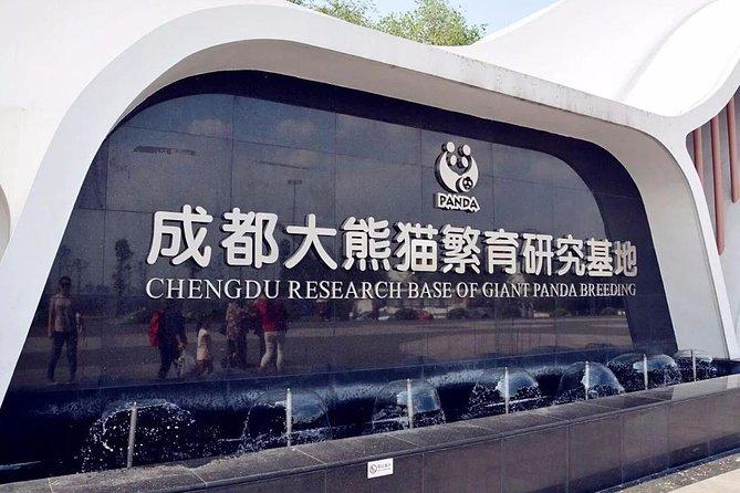 Chengdu Sightseeing with Panda Breeding Center Visit One Day Tour