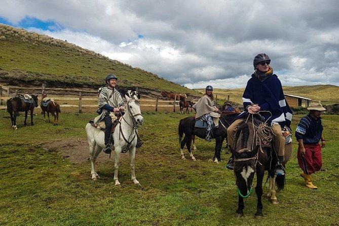 Cotopaxi Trek Glacial + Back Horse Riding