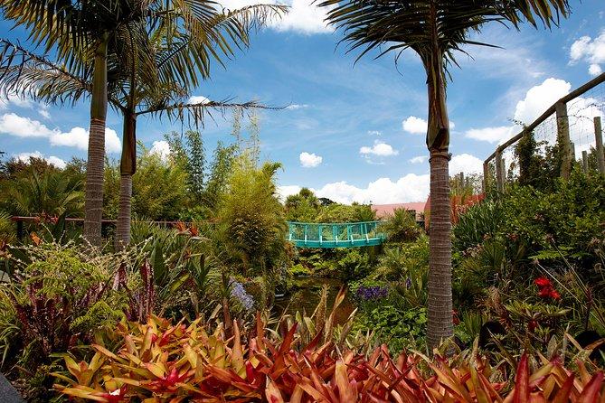 Hamilton Gardens New Zealand Guided Tour
