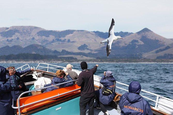 Monarch Wildlife Cruise