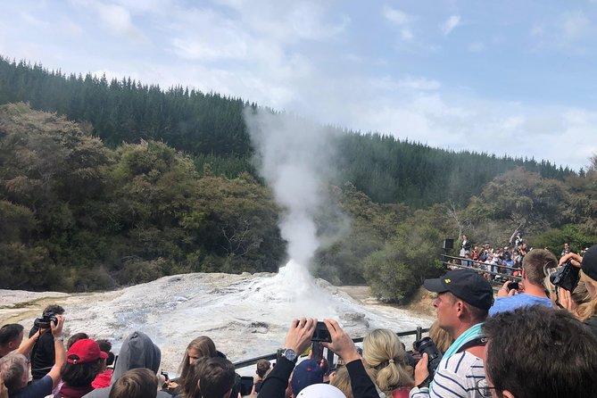 Wai-O-Tapu & Te Puia Rotorua in a Small Group Tour (Auckland Return)