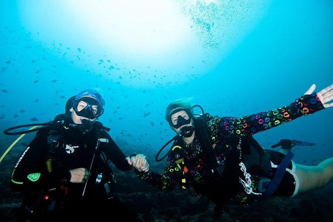 Nusa Penida Discover Scuba Diving Program