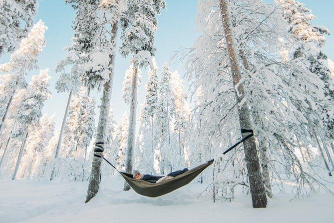 HaliPuu forest is a winter wonderland
