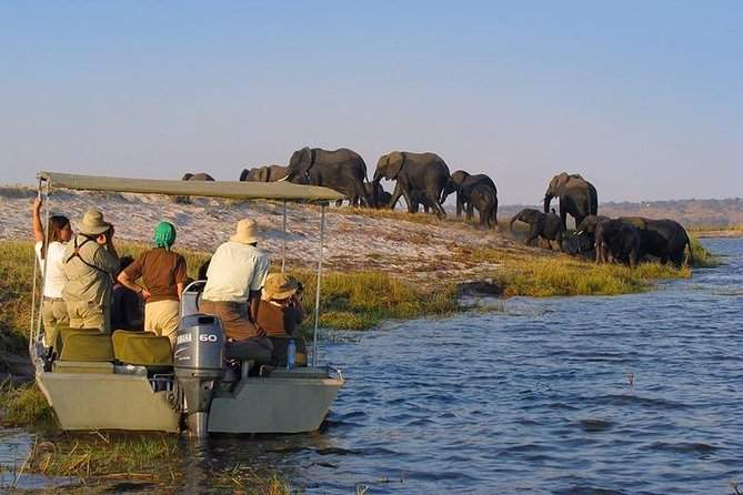 4-Day Selous Private Safari photo 18