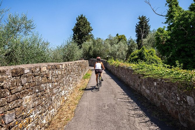 Tuscan Country Bike Tour from Florence, Including Wine and Olive Oil Tastings