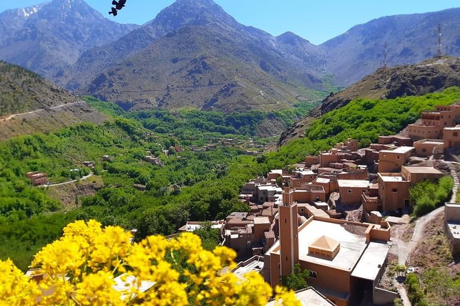 Desert Agafay and Atlas Mountains Day Trip & Camel Ride From Marrakech photo 8