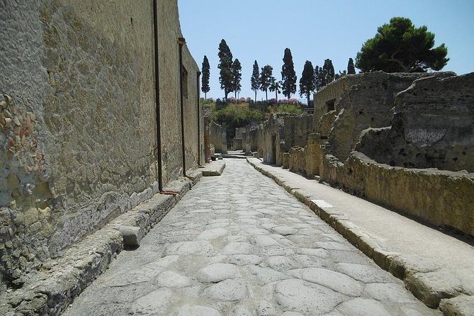 Herculaneum Private Tour from Naples photo 4