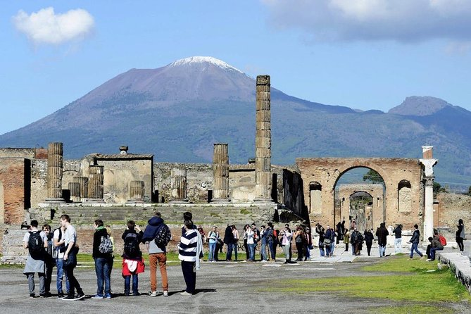 Day Tour Archaeological Site Of Pompei And Herculaneum photo 7