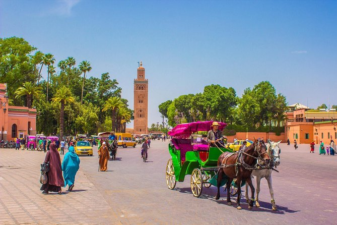 Family Walking Tour of Marrakech Medina in Day Excursion With Local Guide photo 1