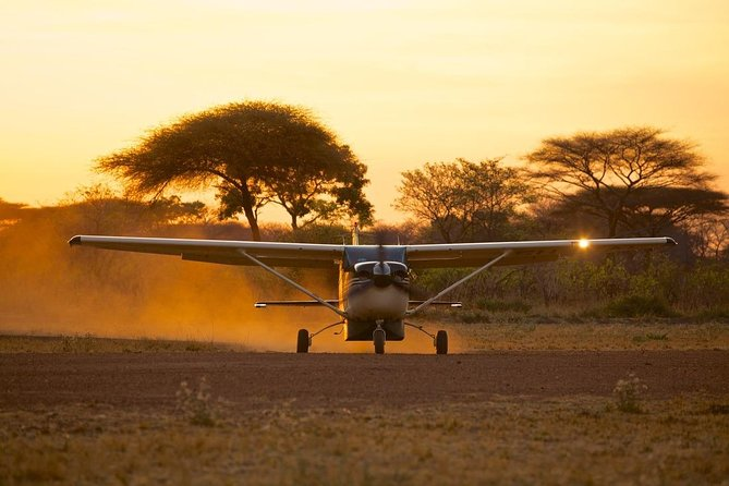 3 Days,fly In Safari-Selous Game Reserve
