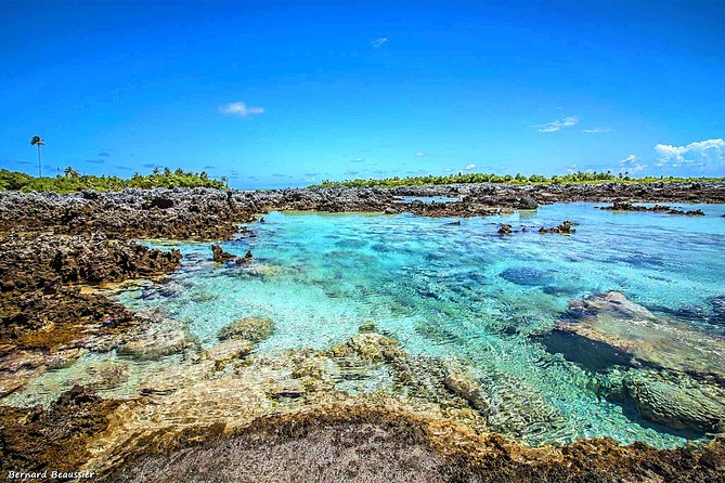 Reef Island / The Reef Island